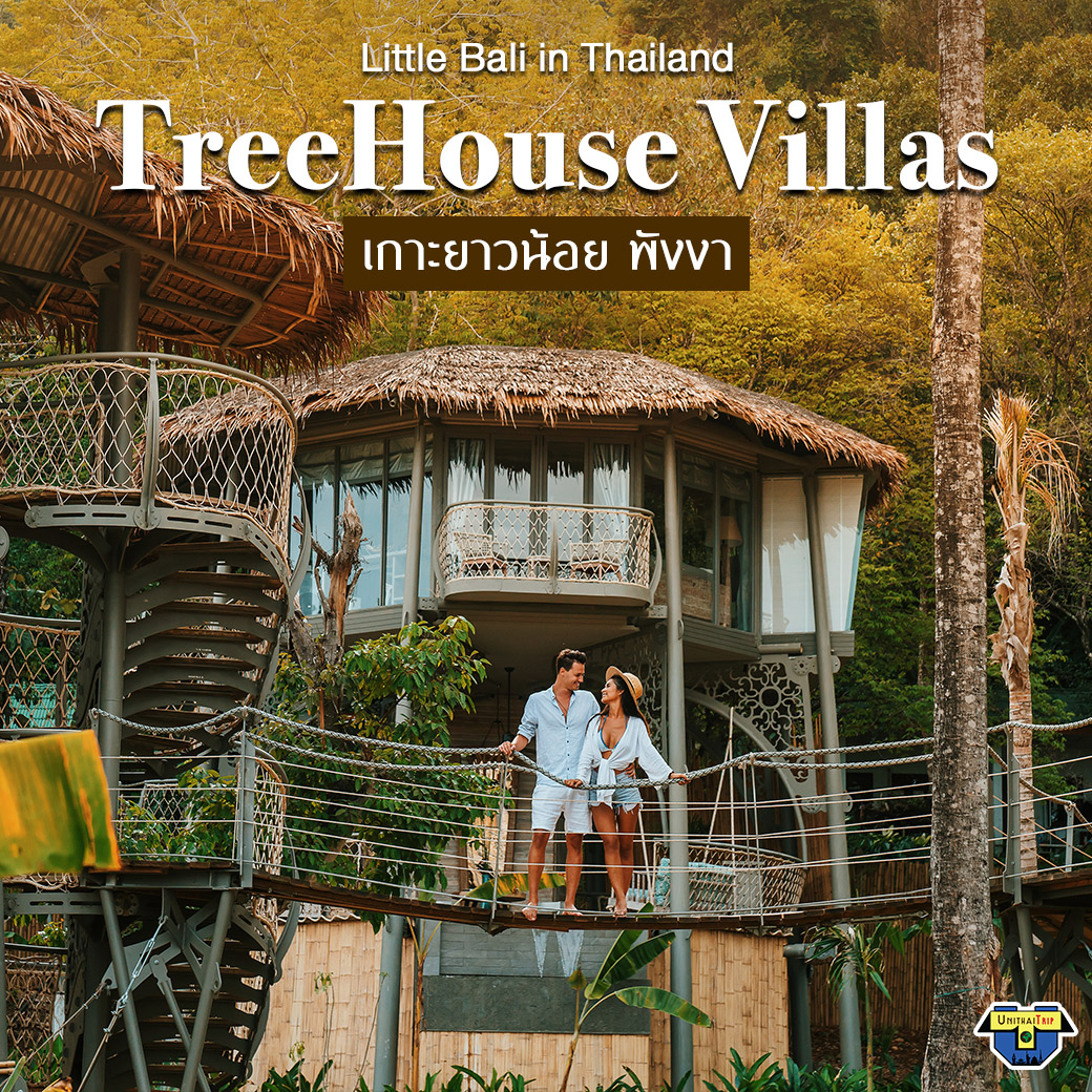โปรเด็ด TreeHouse บ้านพักสุดหรู